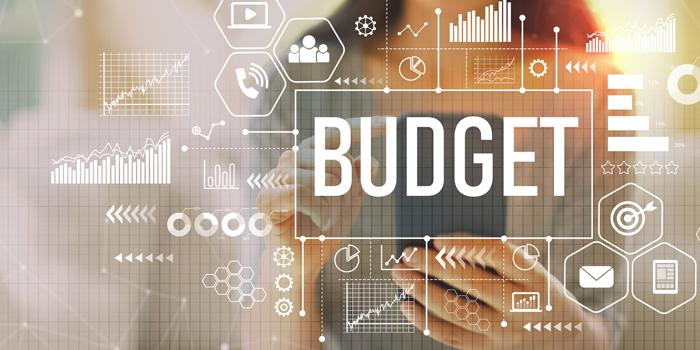 Overall Budget